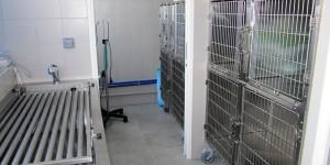 Chenil Cabinet Vétérinaire Chambourcy